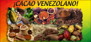 Cacao venezolano gana el premio Great Taste Awards 2020